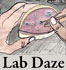 lab_Daze_icon